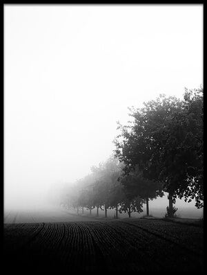 Buy this art print titled Foggy Day II by the artist Oliver Buchmann