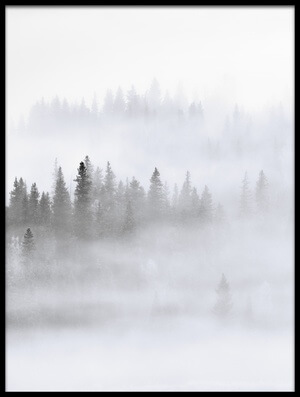 Buy this art print titled Foggy Forest by the artist Mei Xu