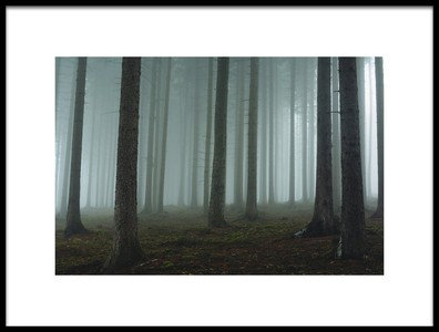 Art print titled Foggy Forest by the artist David Charouz