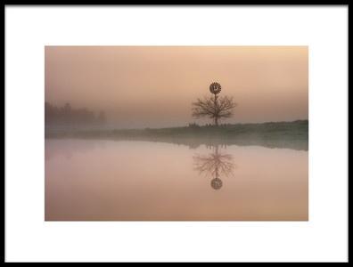 Art print titled Foggy Morning by the artist Jingshu Zhu