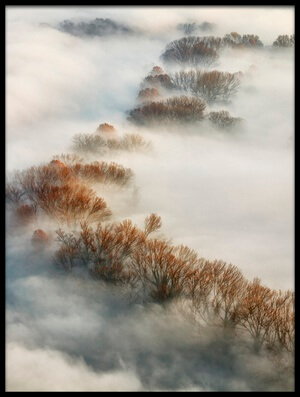 Art print titled Foggy Valley by the artist Fiorenzo Carozzi