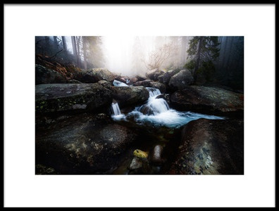 Art print titled Forest Stream  High Tatras by the artist Kristian Potoma
