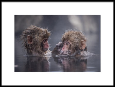 Buy this art print titled Friends by the artist Takeshi Marumoto