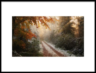 Art print titled Frosty Fall by the artist Vincent Croce