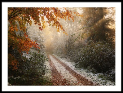 Buy this art print titled Frosty Fall by the artist Vincent Croce