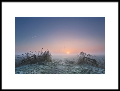 Art print titled Frosty Morning by the artist Anna Zuidema
