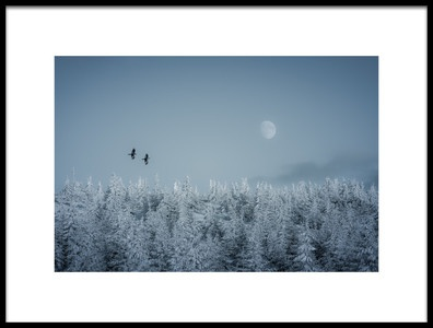 Art print titled Frozen Moon by the artist Daniel Mîrlea