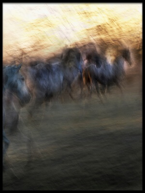 Art print titled Gallop to the Unknown by the artist milan malovrh
