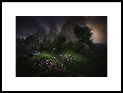 Art print titled Garden of Eden by the artist Luca Rebustini