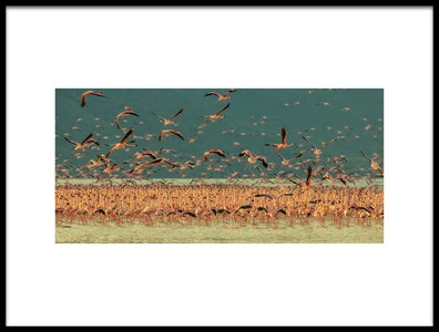 Art print titled Gathering In Golden Light by the artist David Hua