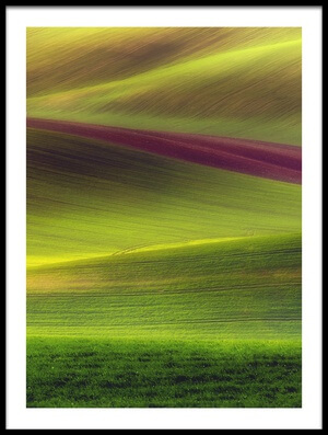 Buy this art print titled Golden Fields II by the artist Piotr Krol (Bax)