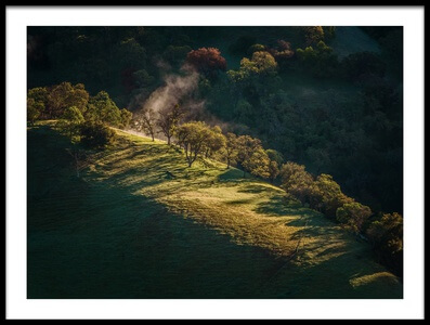 Art print titled Good Morning Sunol by the artist Jenny Qiu