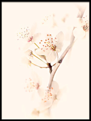 Art print titled Harmony of Spring by the artist Jacky Parker