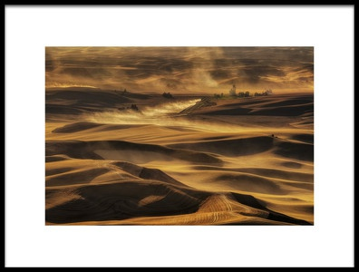 Art print titled Harvest Gold by the artist Lydia Jacobs