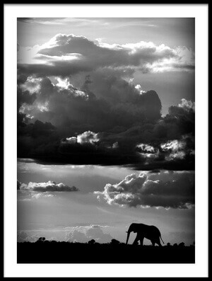 Art print titled He Walks Under an African Sky by the artist WildPhotoArt