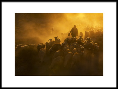 Art print titled Herd and Shepherd by the artist feyzullah tunc