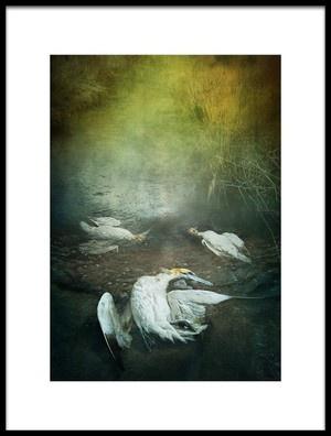 Art print titled Herons by the artist Lucynda Lu