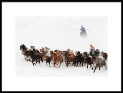 Art print titled Horse Run In the Snow by the artist Adam Wong