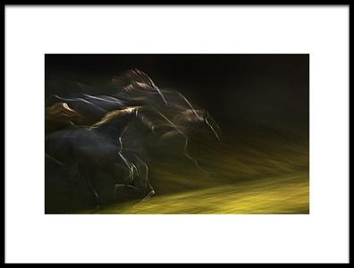 Art print titled Horsepower by the artist milan malovrh