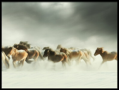 Buy this art print titled Horses Gallop by the artist Shu-Guang Yang