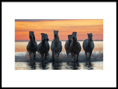 Buy this art print titled Horses In the  Coming  With the Sun by the artist Julio Lozano Brea