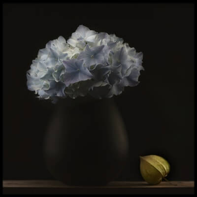 Art print titled Hydrangea and Vase by the artist Lotte Grønkjær