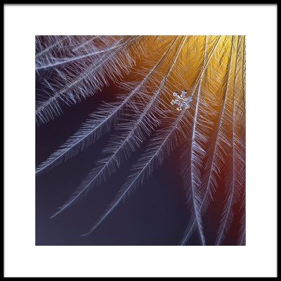 Art print titled Ice and Flame by the artist Elena Solovieva