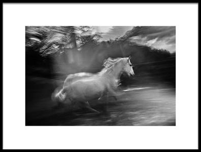 Art print titled In Element by the artist milan malovrh