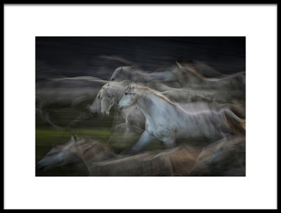 Art print titled In Rush by the artist milan malovrh