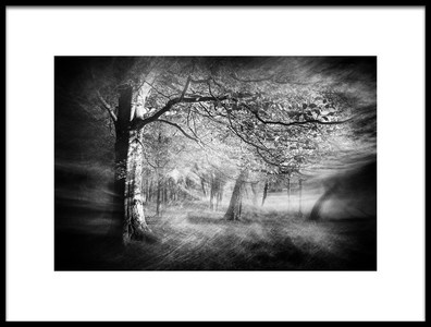 Art print titled In the Eerie Woods by the artist Gustav Davidsson