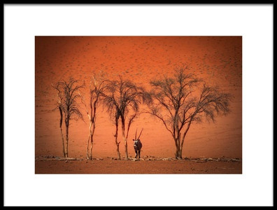 Art print titled In the Heat of High Noon by the artist Irca Caplikas