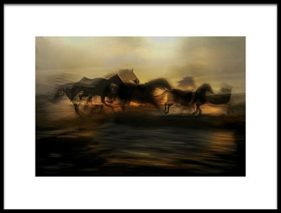 Art print titled In the Morning Gallop by the artist milan malovrh