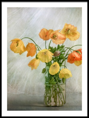 Art print titled In the Window by the artist Mandy Disher