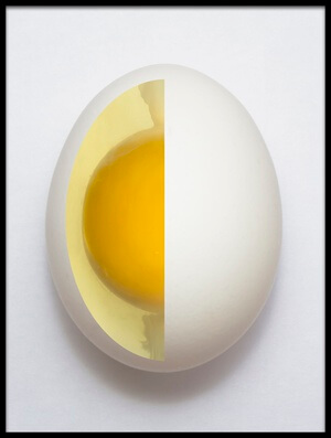 Art print titled Inner Egg by the artist Adelino Alves