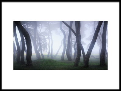 Art print titled Into the Mist by the artist Gwangseop eom