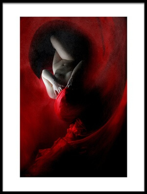 Buy this art print titled Into the Red by the artist Olga Mest