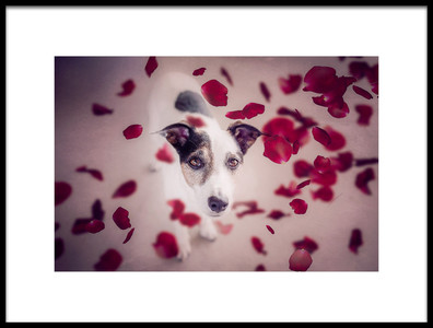Buy this art print titled It Should Rain Red Roses for Me by the artist Heike Willers
