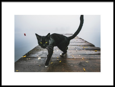 Art print titled Kitty by the artist Mateusz Gorny