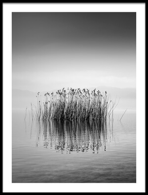 Art print titled Lake Reflections by the artist George Digalakis
