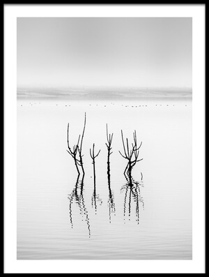 Buy this art print titled Lake Reflections by the artist George Digalakis