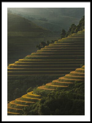 Art print titled Landing Fields at Sunrise Beautiful Golden Light Shines by the artist Jakkree Thampitakkull