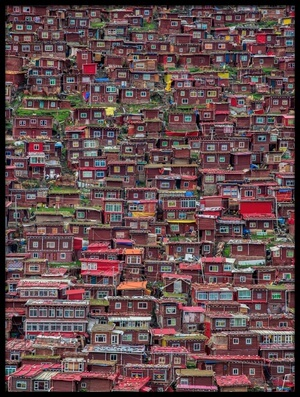 Buy this art print titled Larung Gar by the artist TianYu