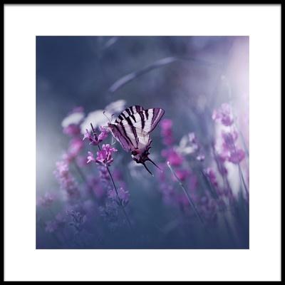 Art print titled Lavender Queen by the artist Juliana Nan