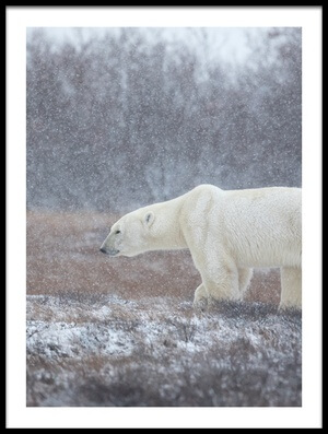 Buy this art print titled Let It Snow! by the artist Alessandro Catta