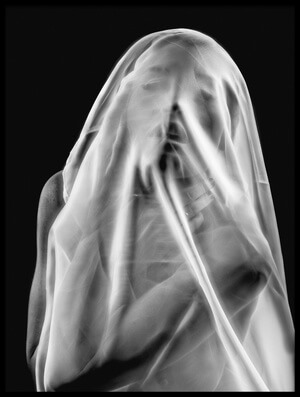 Buy this art print titled Life Behind the Veil by the artist Colin Dixon