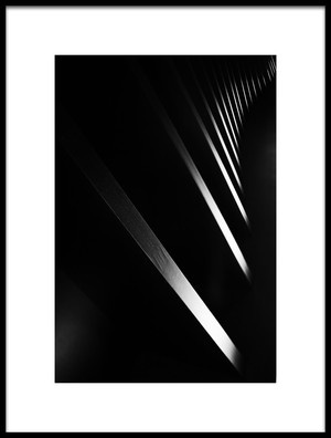 Art print titled Light and Shadow by the artist Shan Jiang