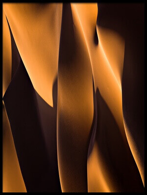 Art print titled Light and Shadow by the artist Mohammadreza Momeni