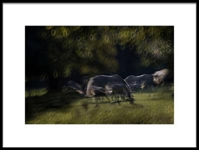 Art print titled Light Flow by the artist milan malovrh