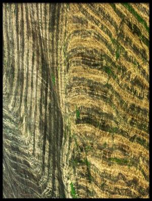 Art print titled Lines by the artist Jure Kravanja