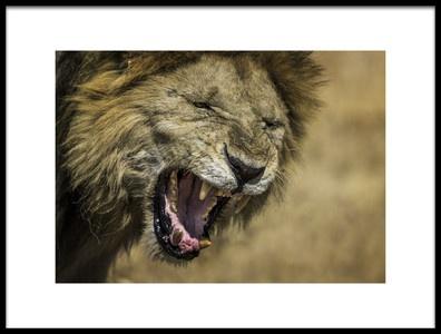 Art print titled Lion by the artist AHMAD AL SAFFAR